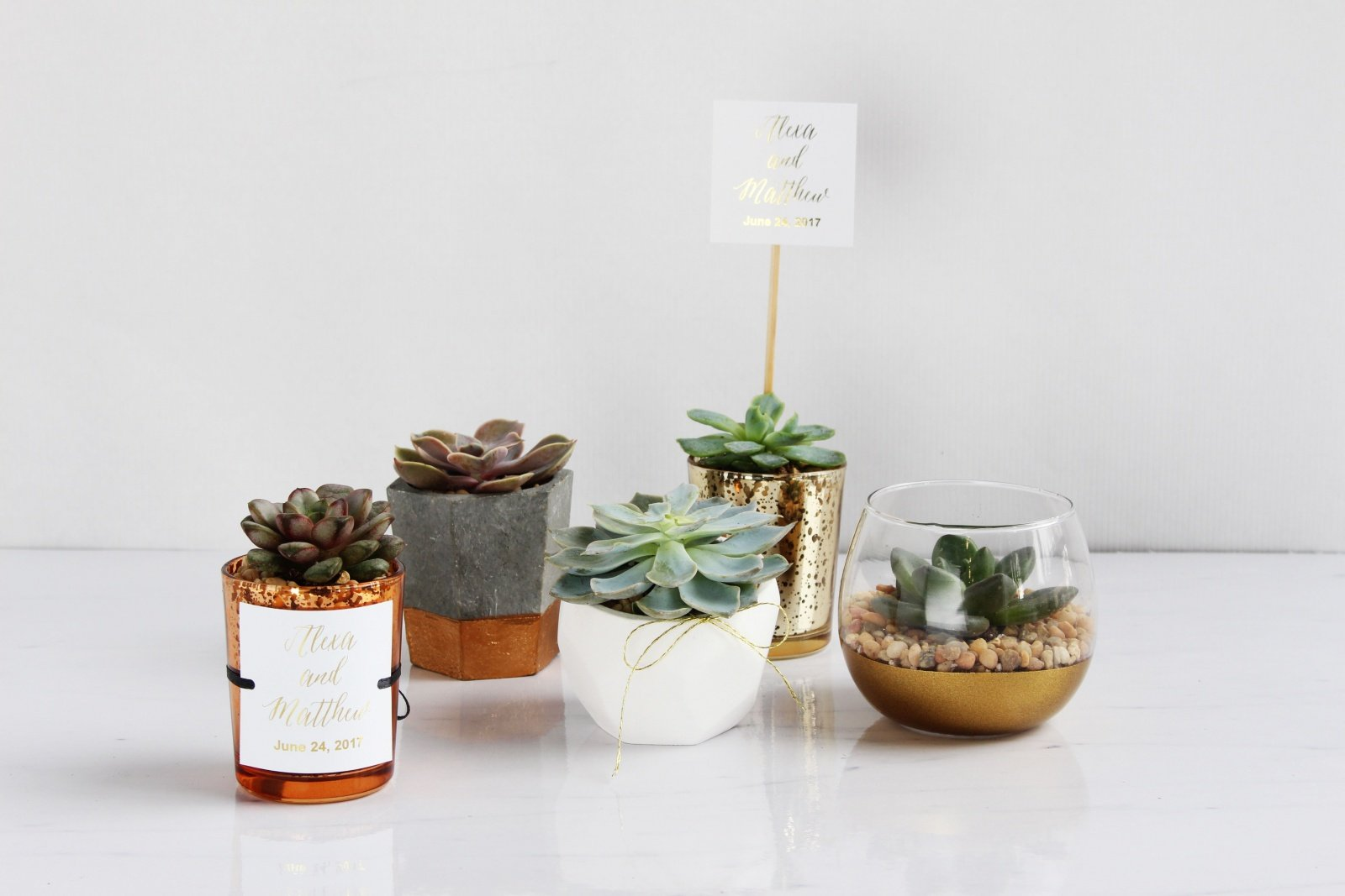 Creative Crafting: The Prettiest DIY Succulent Wedding Favors -Beau ...