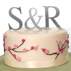 Brushed Metal Monogram Cake Toppers