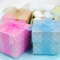 Polka Dot 2 Piece Square Favor Boxes