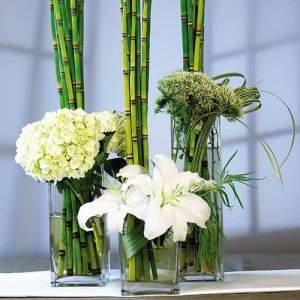 Contemporary Square Glass Vases