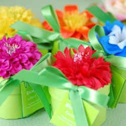 Mini BloemBox Flower Seeds