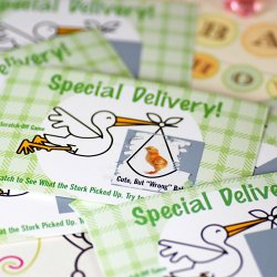 Special Delivery Stork Baby Shower Scratcher Game