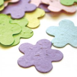 Plantable Flower Confetti