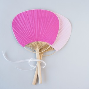 Color Paddle Fan