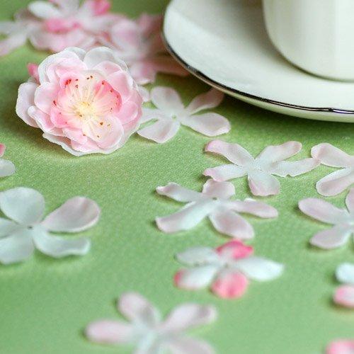 Cherry Blossom Petal Toss