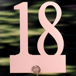 Laser Cut Table Number Cards