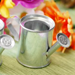 Miniature Watering Cans