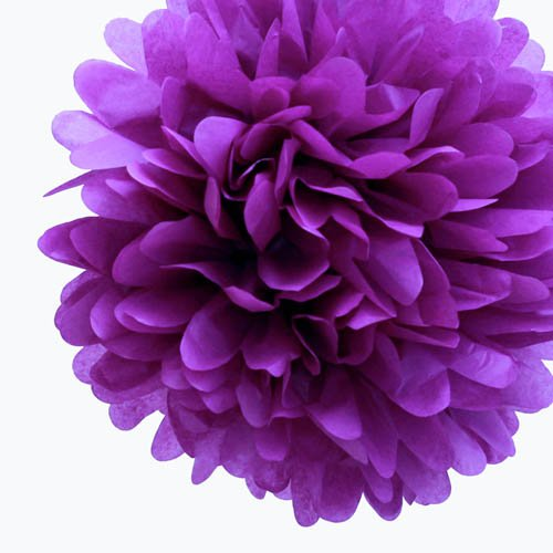 5 Inch Wedding Pom Poms