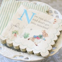 Peter Rabbit Party 5