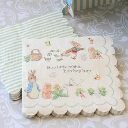 Peter Rabbit Party 7