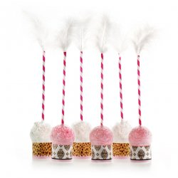 Leopard & Love Baby Pink Cake Pop Kit