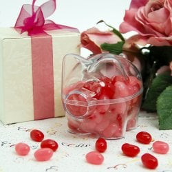 Clear Acrylic Piggy Bank Favor Box