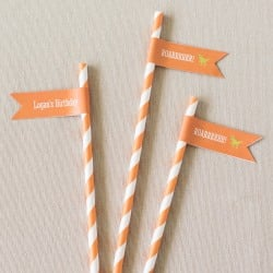 Personalized Birthday Themed Flag Labels with Straws