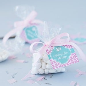 Personalized Baby Shower Themed Favor Tags