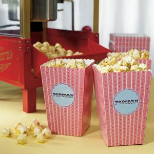 Novelty Popcorn Cartons
