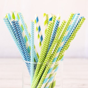 Decorative Paper Straws