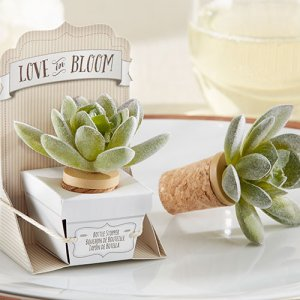 """Love in Bloom"" Succulent Bottle Stopper"