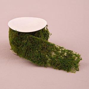 Moss Ribbon