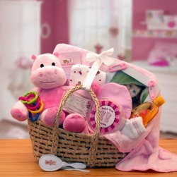 Precious Baby Gift Basket