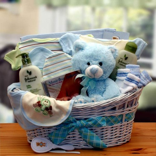 Organic Baby Gift Basket in Blue