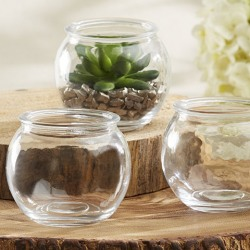 Mini Glass Terrarium Bowls
