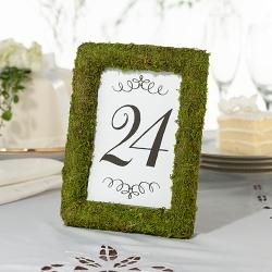 Moss Frame
