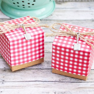 Red Gingham Favor Box