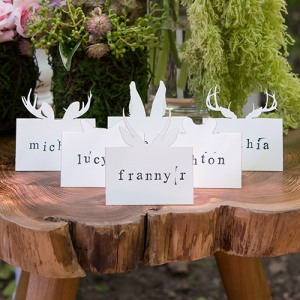 Woodland Animal Place Cards