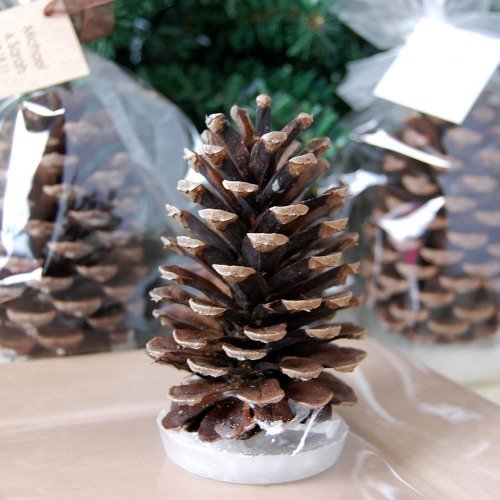 Pine Cone Fire Starter Favors
